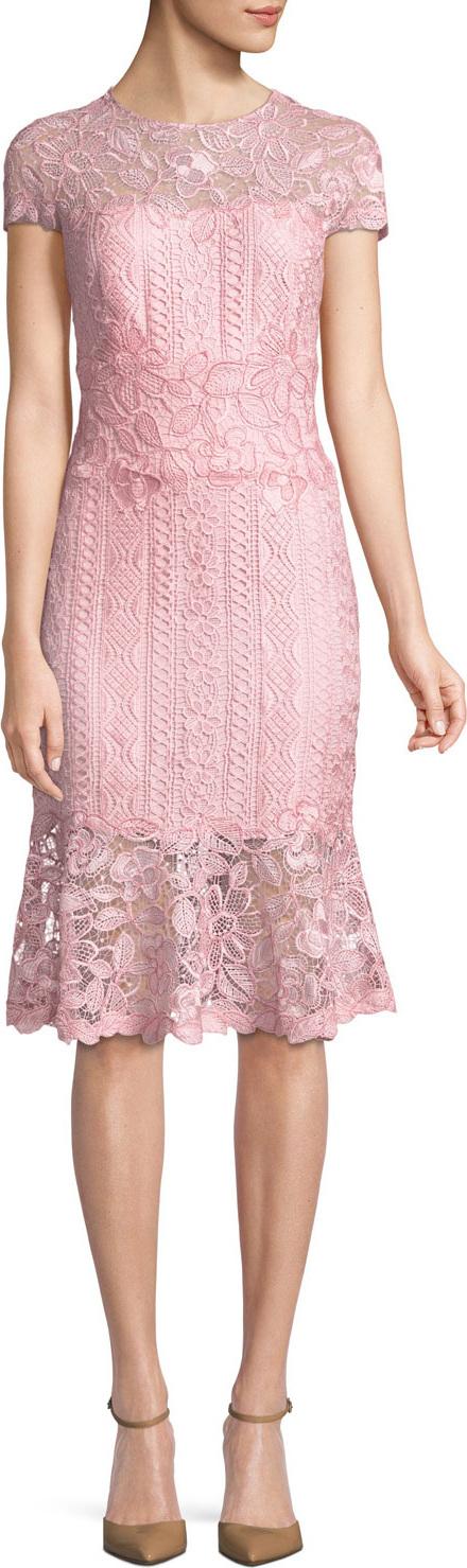 Tadashi Shoji Embroidered Lace Cocktail Dress