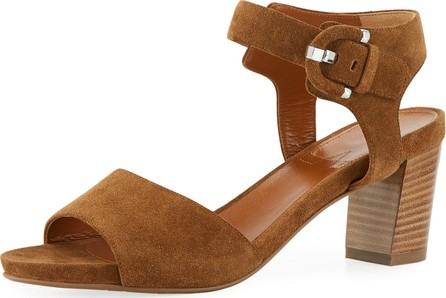 Aquatalia Brenna Suede Ankle Sandals