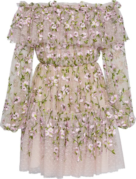Giambattista Valli Off-The-Shoulder Floral-Embroidered Tulle Dress