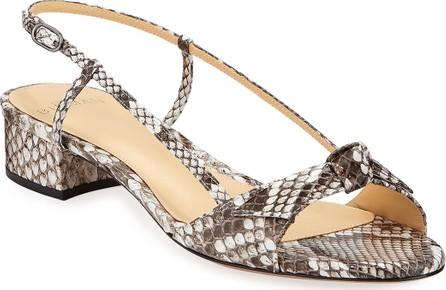 Alexandre Birman Clarita Python Slingback Bow Sandals