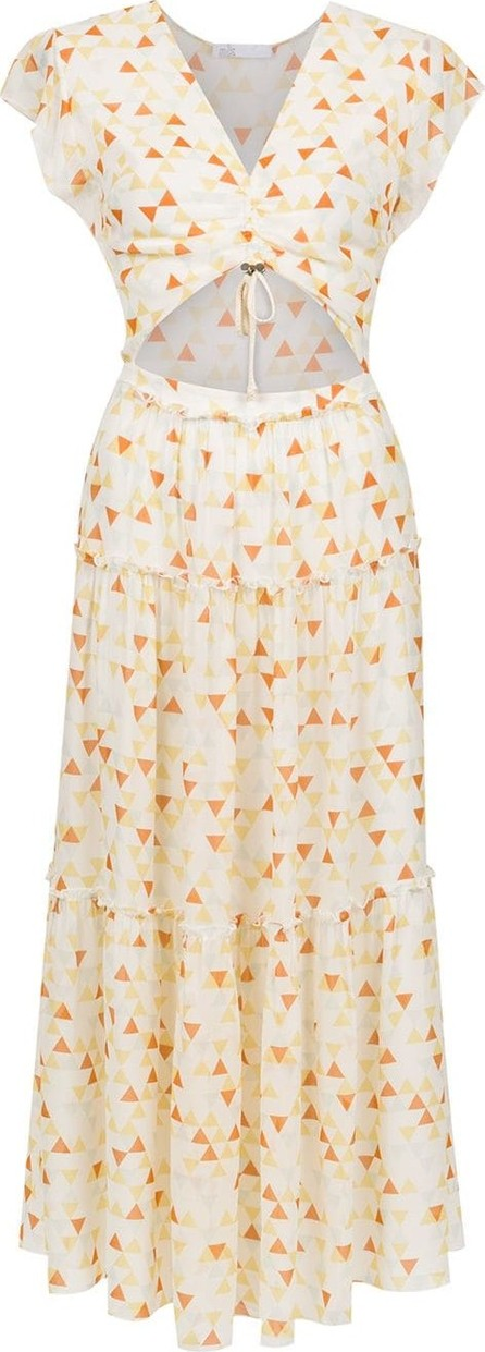 Nk Printed silk dress