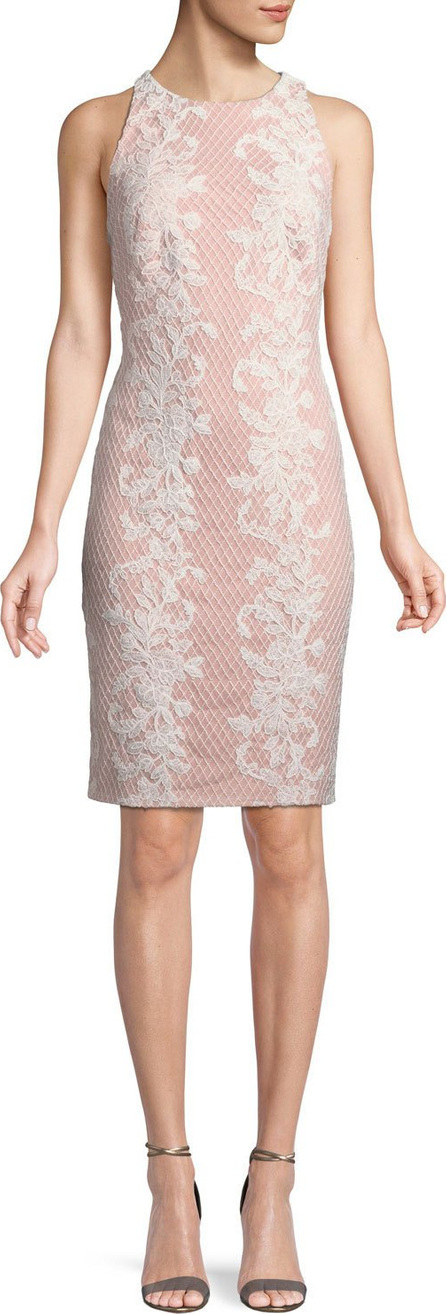 Tadashi Shoji Sleeveless Lace Appliqué Sheath Dress