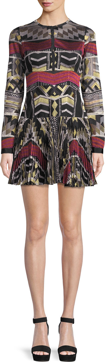 Alexis Nalory Pleated Long-Sleeve Embroidered Mini Dress