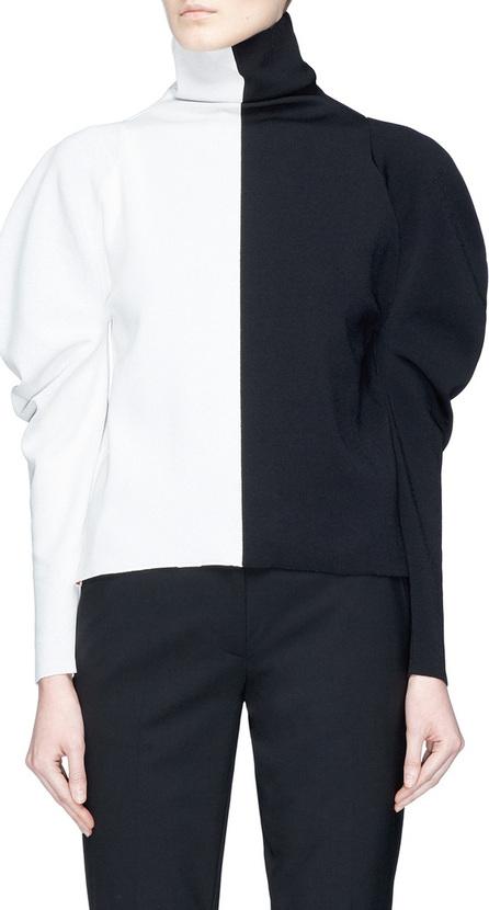 Haider Ackermann Puff sleeve colourblock turtleneck knit top