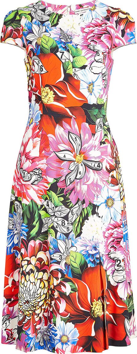 Mary Katrantzou Osmond Printed Dress