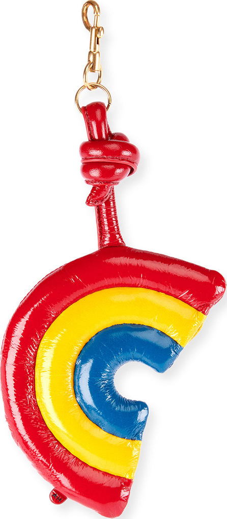 Anya Hindmarch Leather Chubby Rainbow Charm