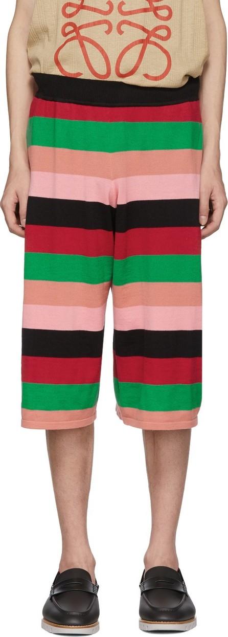 LOEWE Multicolor Knit Stripe Shorts