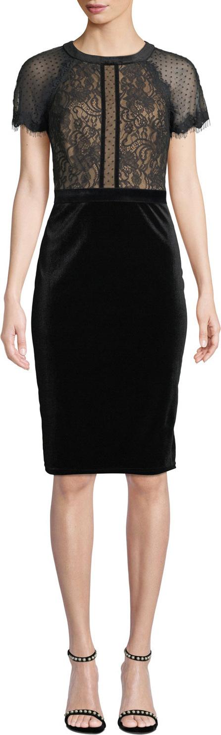 Tadashi Shoji Lace & Velvet Short-Sleeve Dress