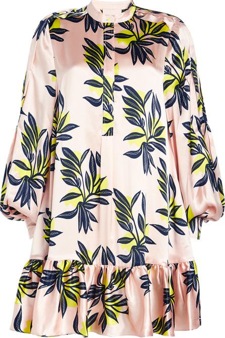 Roksanda Aviana Printed Silk Dress