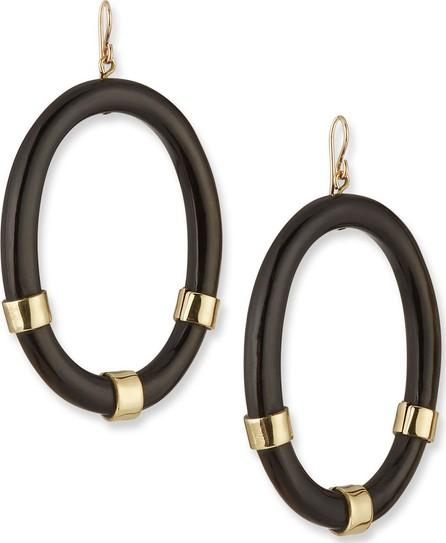 Ashley Pittman Somo Oval Drop Earrings in Dark Horn