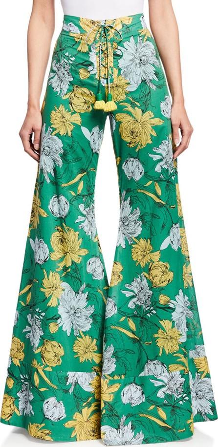 Alexis Donovan Floral-Print High-Rise Wide-Leg Lace-Up Pants