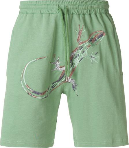 Cottweiler Dryland shorts