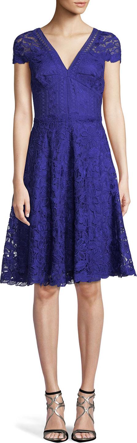 Tadashi Shoji Lace Fit-&-Flare V-Neck Dress