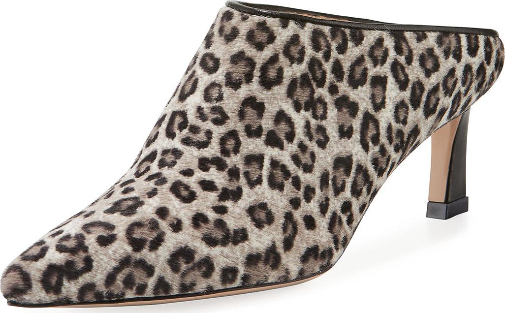 Stuart Weitzman - Mira Leopard Kitten-Heel Point-Toe Mule
